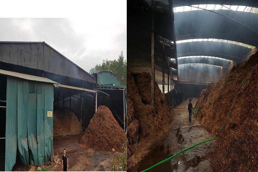 Sơn Động - Bắc Giang:  Cần nhanh chóng làm rõ nguyên nhân vụ cháy xưởng chế biến gỗ của Công ty TNHH chế biến lâm sản 1945 - Ảnh 1