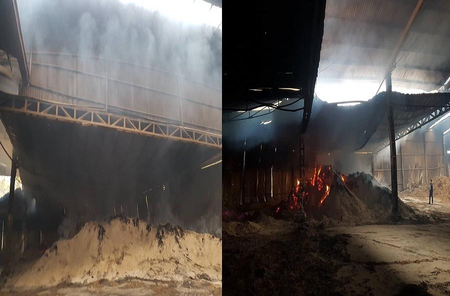 Sơn Động - Bắc Giang:  Cần nhanh chóng làm rõ nguyên nhân vụ cháy xưởng chế biến gỗ của Công ty TNHH chế biến lâm sản 1945 - Ảnh 2