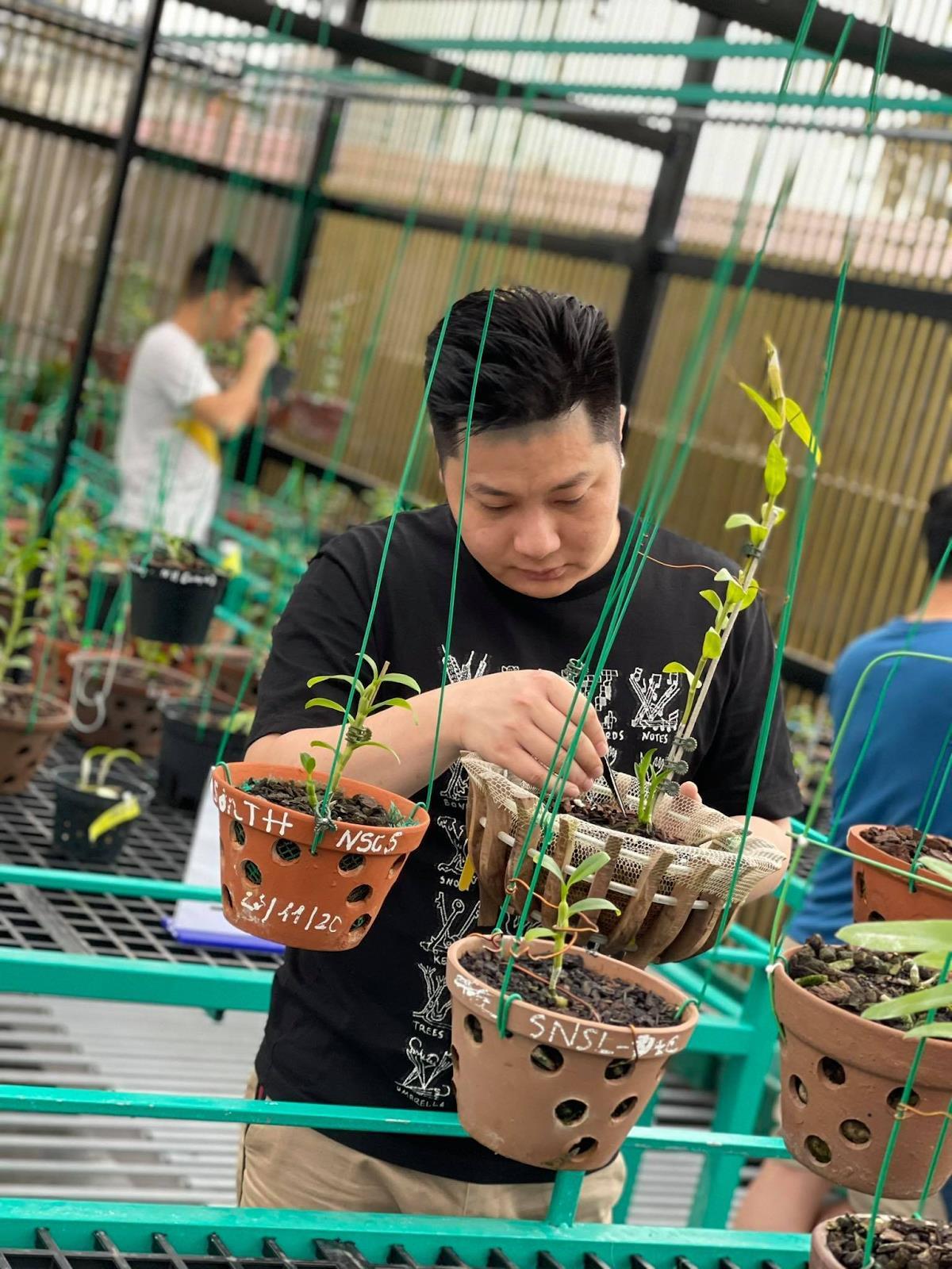Nghệ nhân Trần Hạo Nam và những chia sẻ về bí quyết thành công trong ngành hoa lan - Ảnh 1