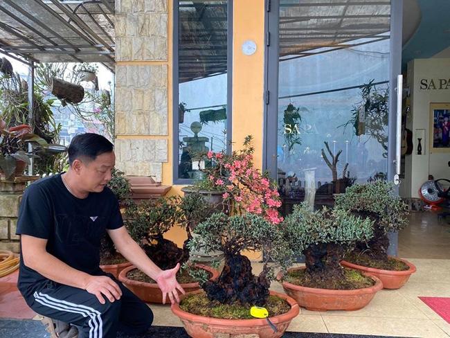 """Chiêm ngưỡng cặp mộc hương có """"1-0-2"""" ở Đông Nam Á, được định giá 12 tỷ đồng - Ảnh 3"""