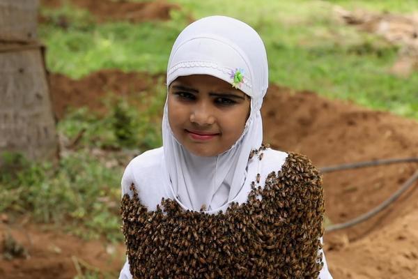Tin tức đời sống mới nhất ngày 25/8/2020: Bé gái để 100.000 con ong vây kín người - Ảnh 1