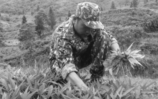 """Áo xanh biên phòng chiến đấu với """"giặc"""" COVID-19: Nỗi niềm gác chốt (Bài 2) - Ảnh 2"""