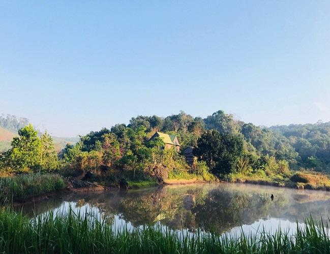 """Cặp vợ chồng 9x bỏ Sài Gòn lên núi làm """"người rừng"""", gây dựng vườn địa đàng đẹp như cổ tích - Ảnh 3"""