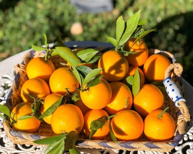 Nhà nhiều cam, tôi làm món bánh thơm ngon cho cả nhà thưởng thức - Ảnh 1