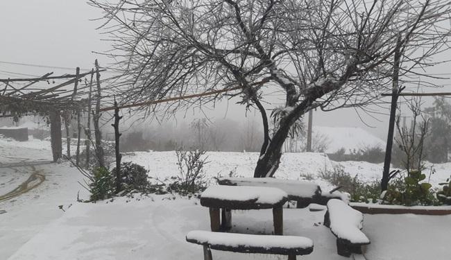 """Tuyết rơi dày đặc Y Tý, cặp đôi chụp ảnh cưới giữa không gian đẹp như """"trời Âu"""" - Ảnh 6"""