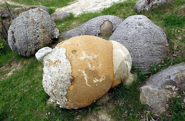 """Khám phá bí ẩn về loại đá có khả năng tự """"lớn lên"""" và di chuyển sau cơn mưa - Ảnh 5"""