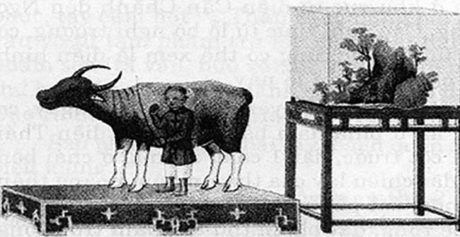 Tục tế trâu thời nhà Nguyễn - Ảnh 1
