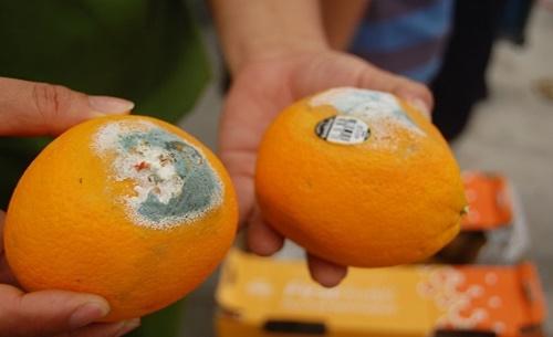 """Vợ chồng trẻ mắc ung thư gan, """"thủ phạm"""" là loại trái cây họ ăn hàng ngày để tiết kiệm - Ảnh 1"""