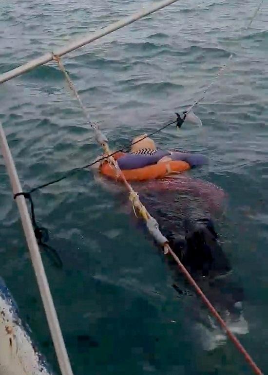 """Mất tích 2 năm, người phụ nữ bỗng được tìm thấy sống sót """"lênh đênh"""" trên biển - Ảnh 2"""