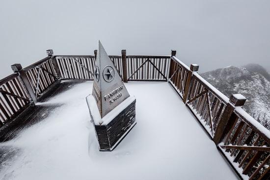 Mưa tuyết phủ trắng đỉnh Fansipan những ngày cuối năm, nhiệt độ xuống -3 độ C - Ảnh 1