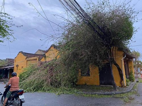 Xót xa khung cảnh phố cổ Hội An tan hoang, xơ xác sau khi bão số 9 đi qua - Ảnh 4