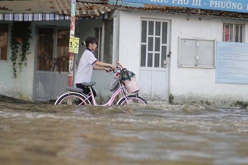 Triều cường ở TP.HCM đạt đỉnh, người dân bì bõm lội nước bì bõm giờ tan tầm - Ảnh 3