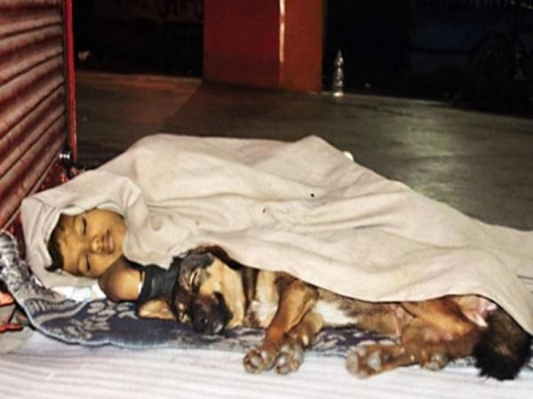Bố đi tù, mẹ bỏ rơi, cậu bé vô gia cư sống cùng chú chó cưng khiến triệu trái tim tan chảy - Ảnh 1