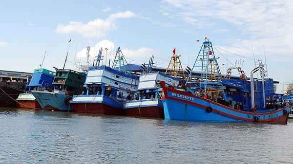 Phát hiện thi thể ngư dân trên tàu cá không số hiệu - Ảnh 1