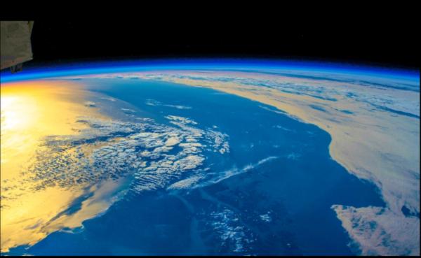 Tiết lộ nguyên nhân dẫn đến sự tuyệt chủng của hàng loạt loài vật trên Trái đất 360 triệu năm trước - Ảnh 2