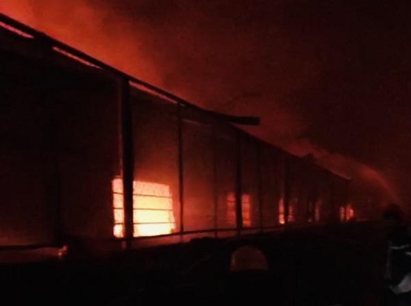 TP. HCM: Cháy lớn trong khu công nghiệp Tân Tạo - Ảnh 3