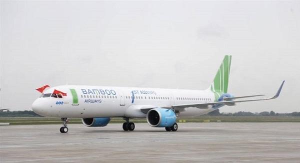 Máy bay hạ cánh khẩn cấp xuống sân bay Nội Bài vì nghi va phải chim - Ảnh 1