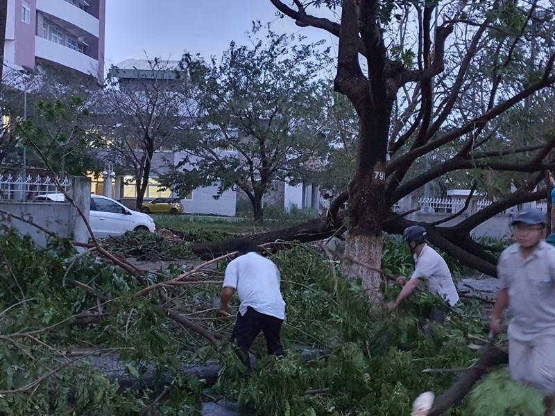 Đà Nẵng: Đường phố ngổn ngang, bờ biển tan hoang sau bão số 9 - Ảnh 4