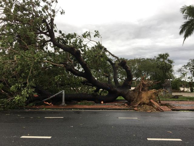 Xót xa cảnh cả nghìn căn nhà bay mái sau đêm bão số 13 quần thảo ác liệt - Ảnh 7