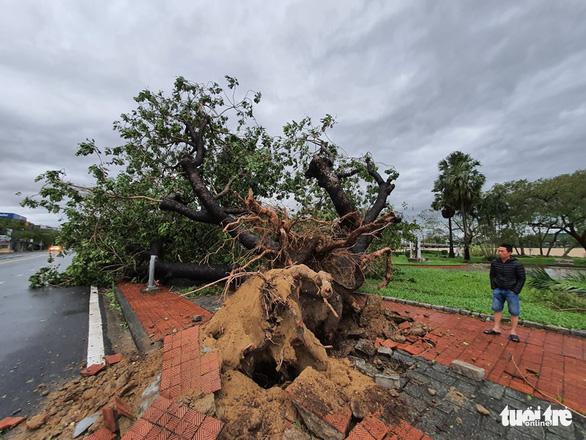 Xót xa cảnh cả nghìn căn nhà bay mái sau đêm bão số 13 quần thảo ác liệt - Ảnh 9
