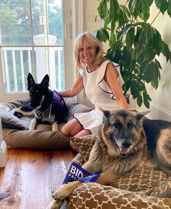 Ứng viên Tổng thống Joe Biden bị chấn thương khi chơi đùa với chó cưng - Ảnh 2