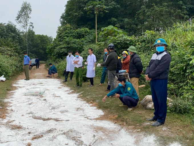 Kinh hãi gần trăm con lợn bệnh chết bị vứt bỏ ven đường - Ảnh 2