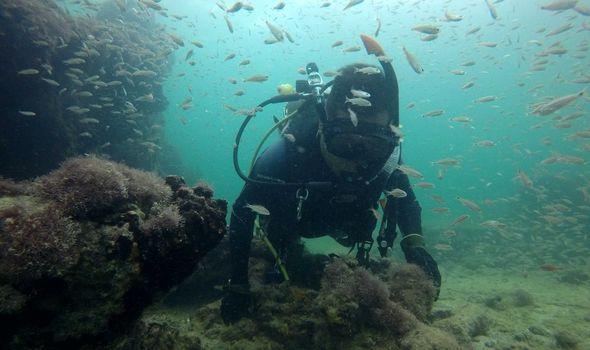 Xác tàu nô lệ đầu tiên từ thời Mayađược tìm thấy ngoài khơi Mexico - Ảnh 1
