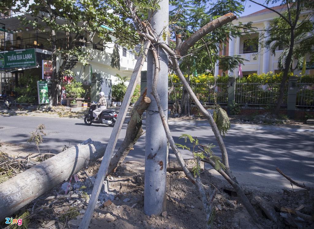 Chủ tịch tỉnh Thừa Thiên - Huế yêu cầu làm rõ chất lượng cột điện - Ảnh 1