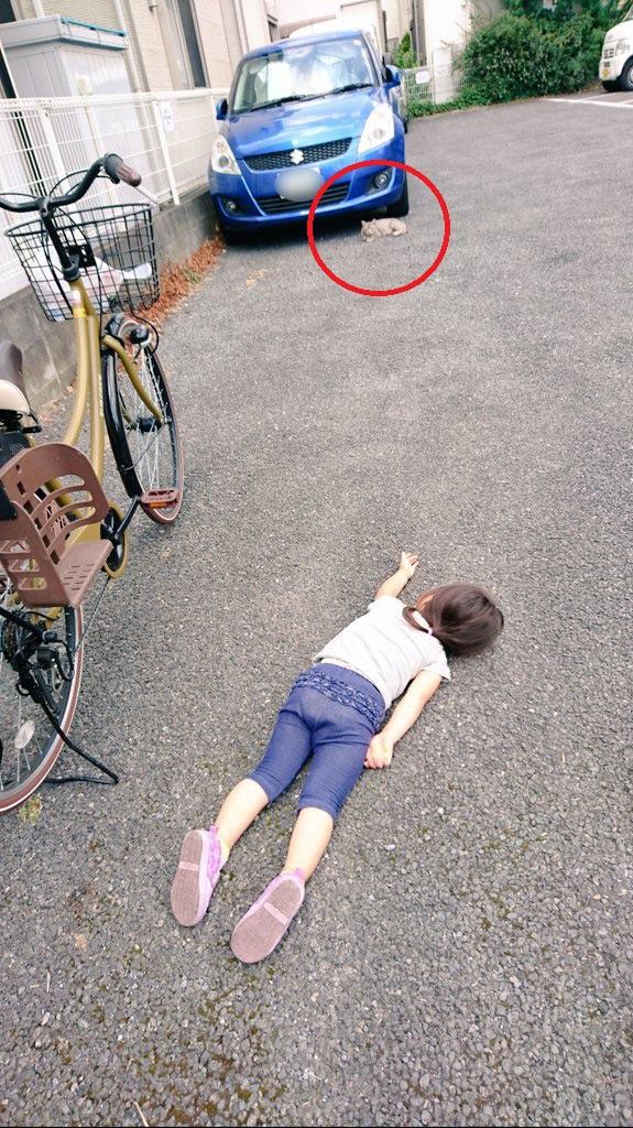 Xôn xao hình ảnh bé gái nằm sõng soài trên đường: Hóa ra là do chơi với mèo rồi ngủ quên - Ảnh 2