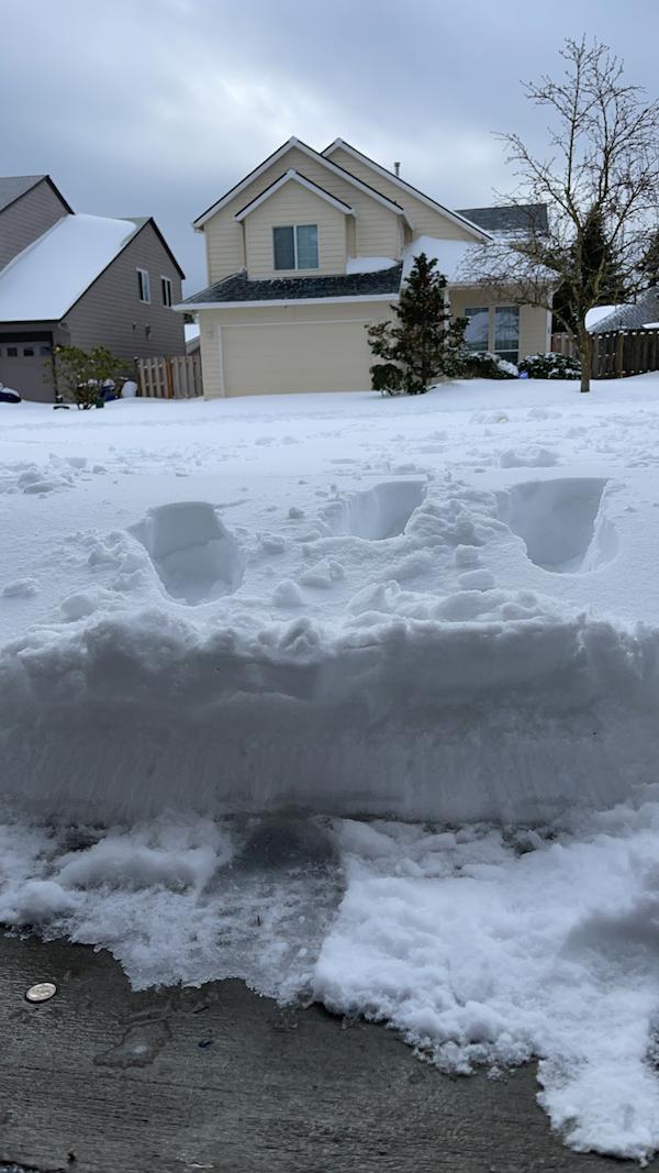 Người Việt tại Mỹ lao đao vì bão tuyết: Phải nghỉ làm, nhiều xe va chạm vì đường trơn trượt - Ảnh 2
