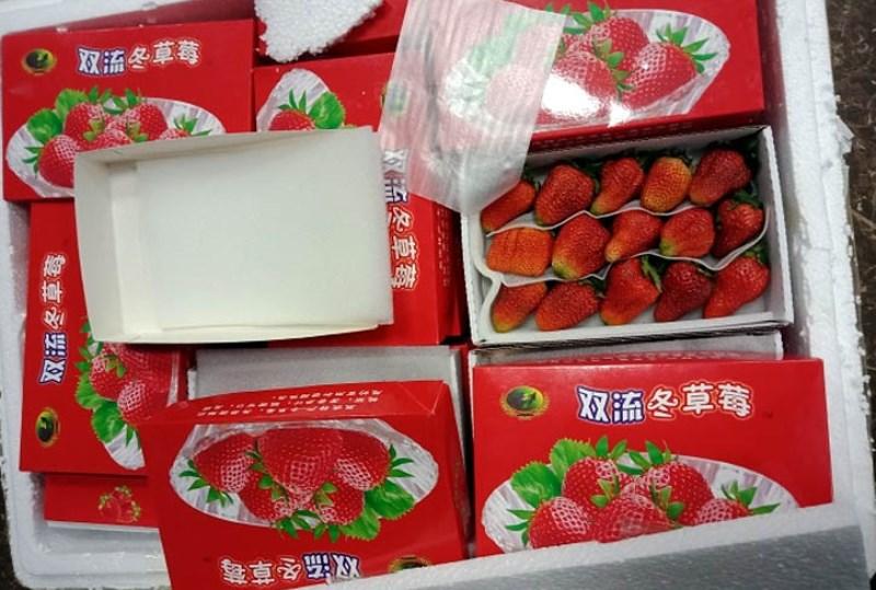 Thu giữ lô hàng dâu tây từ Trung Quốc nhập lậu vào Đà Lạt - Ảnh 1