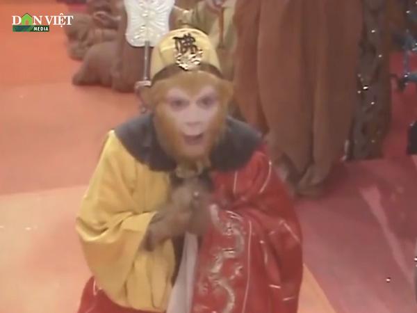 Tây Du Ký: Vì sao trong 3 đồ đệ phò tá Đường Tăng đi lấy kinh chỉ có duy nhất Tôn Ngộ Không được phong thành Phật? - Ảnh 2