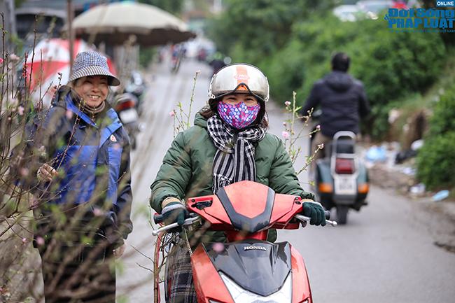 Thời tiết rét đậm, đào Nhật Tân xuống phố báo hiệu cái Tết đã cận kề  - Ảnh 7