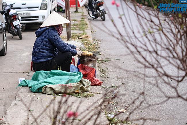 Thời tiết rét đậm, đào Nhật Tân xuống phố báo hiệu cái Tết đã cận kề  - Ảnh 8