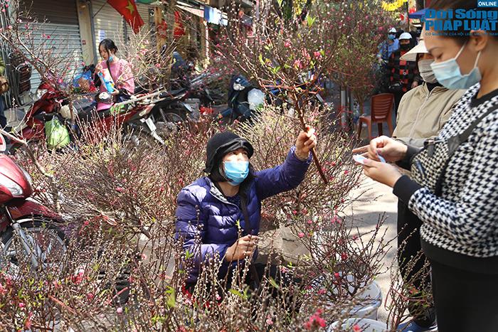 Chợ hoa Hàng Lược chiều 29 Tết: Khách đến xem nườm nượp nhưng ít người mua - Ảnh 4