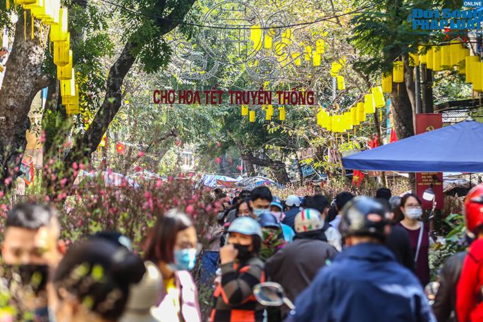 Chợ hoa Hàng Lược chiều 29 Tết: Khách đến xem nườm nượp nhưng ít người mua - Ảnh 2