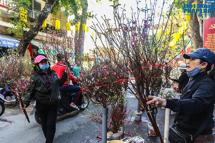 Chợ hoa Hàng Lược chiều 29 Tết: Khách đến xem nườm nượp nhưng ít người mua - Ảnh 5