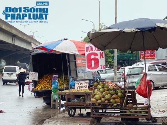 Tiểu thương hé lộ bí mật bất ngờ phía sau những trái dừa xiêm 6k tràn lan khắp phố - Ảnh 1