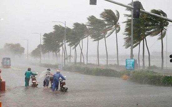 Miền Trung tiếp tục mưa lớn, Hà Tĩnh, Quảng Bình mưa đặc biệt to - Ảnh 1