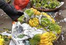 Thị trường - Rằm tháng Giêng: Người Hà Nội đua nhau mua chuối, phật thủ
