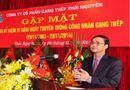 Thị trường - Vì sao Tổng giám đốc Công ty CP Gang thép Thái Nguyên bị mất chức?