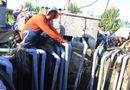 Tin trong nước - Kỳ lạ giếng nước 30 máy bơm cùng hút ngày đêm vẫn không cạn