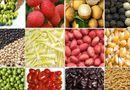 Thị trường - Nông sản, thực phẩm xuất khẩu của VN lại bị cảnh báo