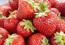 Sức khoẻ - Làm đẹp - Những thực phẩm tốt cho chuyện yêu không thể ngờ