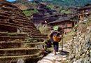 """Sức khoẻ - Làm đẹp - Bí quyết sống lâu của dân """"làng trường sinh"""" ở Trung Quốc"""