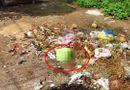 Tin trong nước - Đau lòng phát hiện xác thai nhi trong đống rác