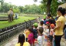 Ăn - Chơi - Địa điểm vui chơi trung thu 2015 ở Hà Nội hấp dẫn nhất