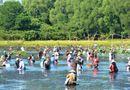 Tin trong nước - Hàng trăm người đầm mình dưới hồ giữa trưa bắt cá