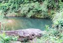 Tin trong nước - Tắm suối, một cán bộ rừng phòng hộ chết đuối thương tâm