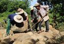 Tin trong nước - Trùng tu giếng cổ nghìn năm ở Quảng Trị